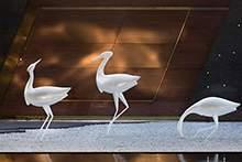玻璃钢仙鹤雕塑摆件玻璃钢火烈鸟不锈钢仙鹤造型摆件