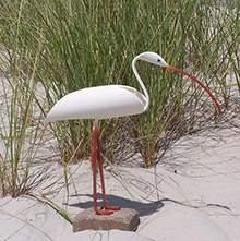地产水景观农庄户外广场草地软装雕塑摆件动物水鸟鸵鸟